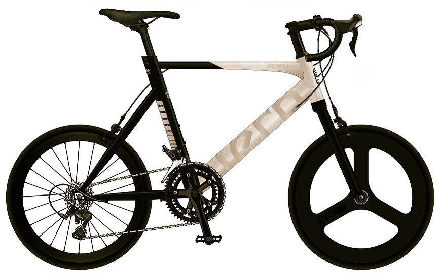 tern (ターン)FLAME bike限定車カラー